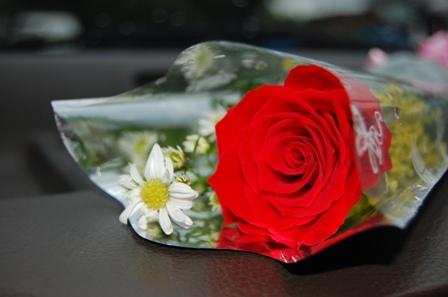 Sekuntum mawar merah buatmu